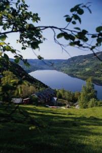 Utsikt over Gudbrandsdalen