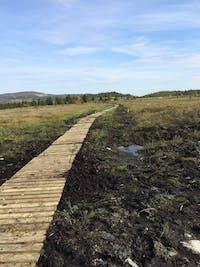 Valdres Natur- og kulturparken. Klopping av stier i turriket.