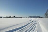 Skiløyper Hadeland langrenn skispor Oppland