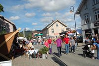 Landsbyen Dokka_landsbymarked