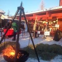 Entrepenørskapsskulen_Skåbu3